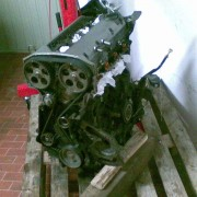 traitement Clio 16S (clio cup)+ restauration. C955e985242732