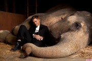 Still Water for Elephants... - Page 3 953934126852241