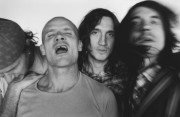 Red Hot Chili Peppers  8ac965203793090
