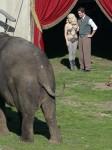 Water for Elephants : Photos  + Vidéos du tournage... - Page 12 E395a4115367596