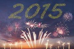 صور تهنئة بالعام الجديد 2015 New-year-fireworks-christmas-holiday-sky-44790477