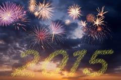 صور تهنئة بالعام الجديد 2015 New-year-fireworks-christmas-holiday-sky-44790557