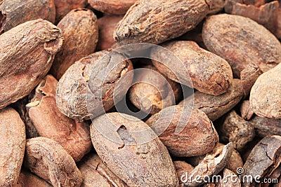 Qu'est ce? Martin du 17 avril trouvé par Jovany Cocoa-beans-macro-19430612
