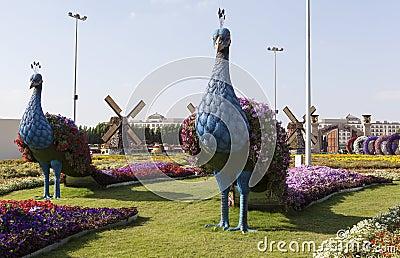 où suis -je -ajonc - 9 septembre trouvé par Martine Parc-de-fleur-%C3%A0-duba%C3%AF-jardin-de-miracle-de-duba%C3%AF-les-emirats-arabes-unis-48672769