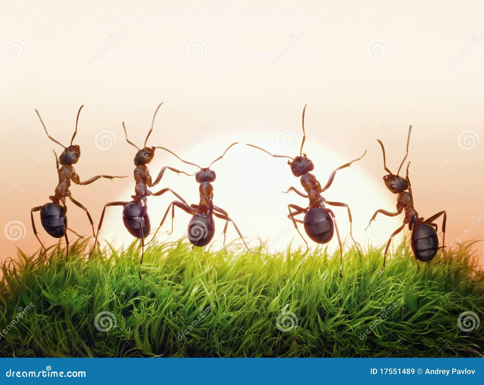 Salón Musical Reina de Corazones. - Página 21 Personas-de-hormigas-en-la-salida-del-sol-alegr%C3%ADa-de-la-vida-concepto-17551489