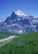Mountains 3bba59631127043