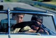 Человек дождя / Rain Man (Том Круз, Дастин Хоффман, Валерия Голино, 1988) B05738630593363