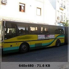 LOS AMARILLOS, S.L. --GRUPO SAMAR-- 049a38df561548378fb7e35acd917c77o