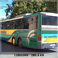 LOS AMARILLOS, S.L. --GRUPO SAMAR-- 0616fc1d31d228dd90922f4d650a9984o