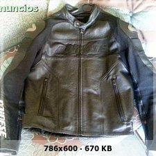 Vendo chaqueta dainese alien pelle 56**VENDIDA** 09afde043b5c96c034398ef0595b7f39o