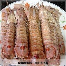¿Qué has comido hoy? 0b40fa219638cbb59d75ebdb9642e79bo