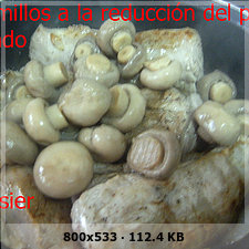Solomillos de cerdo a la reducción de palo cortado 1c6d25349e9c8406a7a40d2c4fe4da2ao