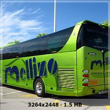 AUTOCARES MELLIZO 1d9e88478c1fb75abc3771bff890c0d8o