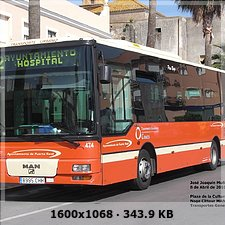 FLOTA TRANSPORTE URBANO PUERTO REAL 201cbeaa8cc09a06a8cd4597a593820do