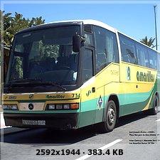 LOS AMARILLOS, S.L. --GRUPO SAMAR-- 2d6a6cca65392a65fc30f4423fe14790o