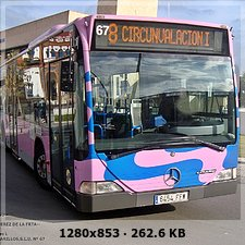 FLOTA TRANSPORTE URBANO JEREZ (COMUJESA) - Página 3 2dc5b5da5cf197212449394089567d37o