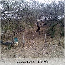MACUQUINA EN SONORA (No me tocaba) 496c5ba75b5b85e82fe009bb5b3b8fbeo