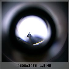 RECOMENDARME UN MICROSCOPIO 531bd2c9c643e85143159b57e2d02456o