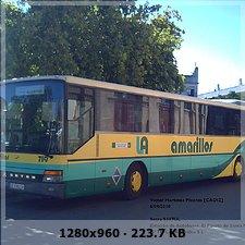 LOS AMARILLOS, S.L. --GRUPO SAMAR-- 55e323c8b323d3217260305b7dc9273ao