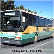 LOS AMARILLOS, S.L. --GRUPO SAMAR-- 580773698dc044fd4bc2c78df56b5884o