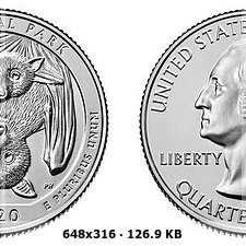 Un murciélago, el curioso animal elegido por Estados Unidos para acuñar una moneda de 2020 7907cd637091f785ef8e01cfbf2aa672o