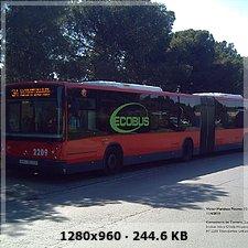 Transportes Urbanos de Zaragoza S.A.U (TUZSA) 95f87ae103001abd715e9afdd7be2372o