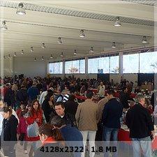 V Feria Internacional de coleccionismo Villanueva de la Serena. 9f79ec23e478fa1d64b0d2ee5bd10589o