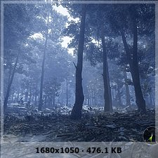 Gatos y vampiros en el bosque :P A21fcce999f790b59d6e6ec5f5b963c2o