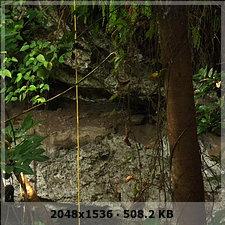 veracruz digging and prehispanic pyramid discovery and unexplored caves!!! A75c852b18af9f5e566e9d9772ffa5f0o