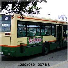 FLOTA TRANSPORTE URBANO CÁDIZ A932067c6c3c1d33830c379691b60278o