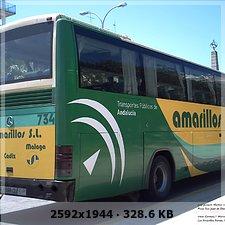 LOS AMARILLOS, S.L. --GRUPO SAMAR-- Abb7e1b56b19a89cf4600c3c87ac3543o