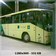 LOS AMARILLOS, S.L. --GRUPO SAMAR-- B65fb3776deaad10b0babcc11ae8276fo