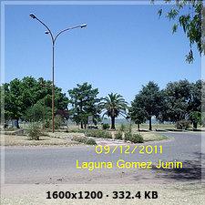 Junin - Laguna de Gomez Bc74f9aa4f5478f53fb5440177aaa955o