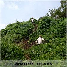 veracruz digging and prehispanic pyramid discovery and unexplored caves!!! E3413c763e2f1d0ff3a28ad334e7369do