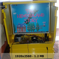 Arcade The newzealand story de Mogue  E9ddc6757a9acb0a2aaab069d19225eeo