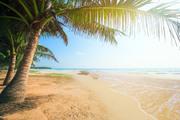 Тропический остров и пляж / Beautiful tropical island and beach Cc4c521190118904