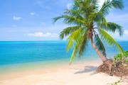 Тропический остров и пляж / Beautiful tropical island and beach B3f2571190116354