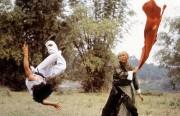 Бесстрашная гиена / Xiao quan guai zhao (Джеки Чан, 1979) A1a50e683835133