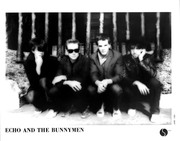 Echo and the Bunnymen 6244f4926694684