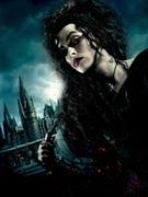 Гарри Поттер и Дары Смерти: Часть первая / Harry Potter and the Deathly Hallows: Part 1 (Уотсон, Гринт, Рэдклифф, 2010) Dd9c301227122264