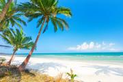 Тропический остров и пляж / Beautiful tropical island and beach Db8c271190116904
