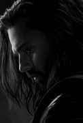 Мстители: Финал / Avengers: Endgame (2019) 722d311220562314