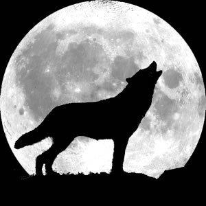 Spazio - Luna Rossa  - Pagina 5 Howlingwolf