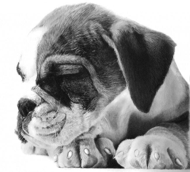 Черно-белый фотореализм Франко Клуна... Bonus3-0019
