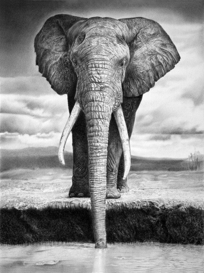 Черно-белый фотореализм Франко Клуна... Bonus3-0020