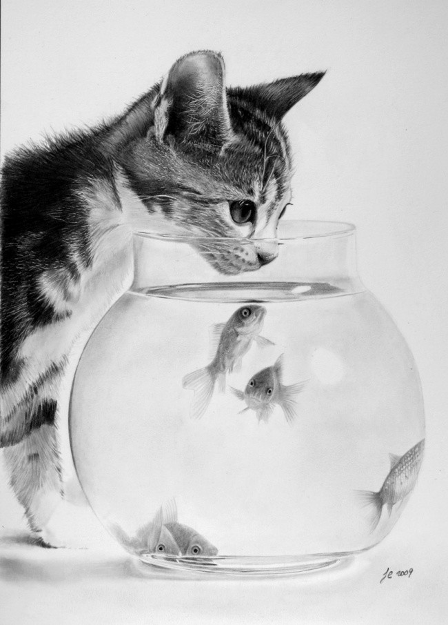 Черно-белый фотореализм Франко Клуна... Bonus3-0029