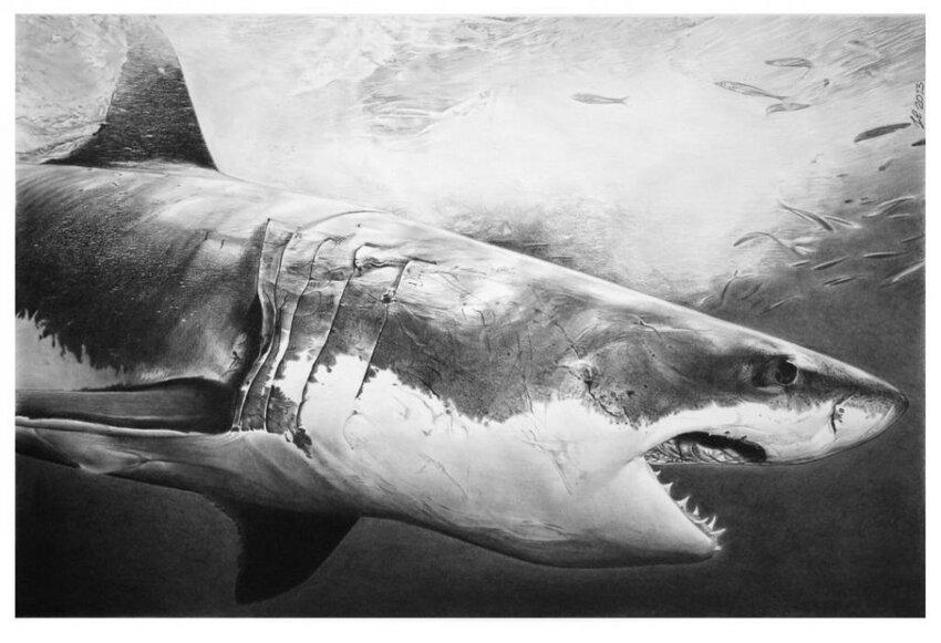 Черно-белый фотореализм Франко Клуна... Bonus3-0038