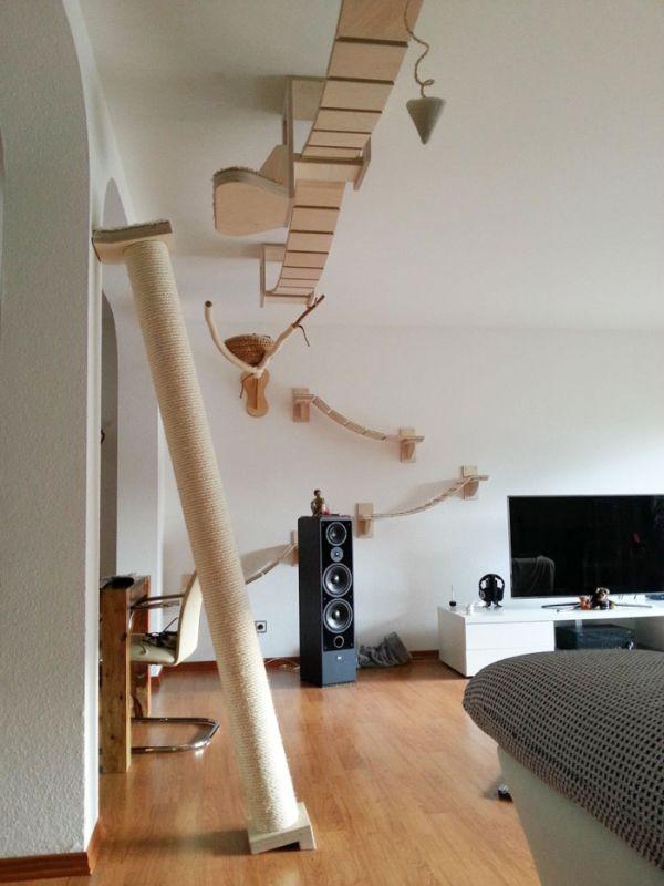 Райское место для кошечек! Cat_playground_room_04