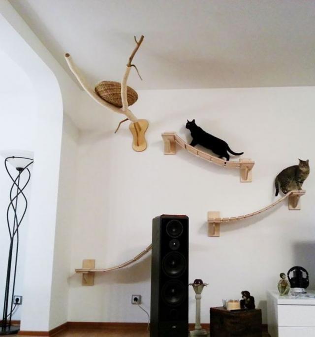 Райское место для кошечек! Cat_playground_room_07