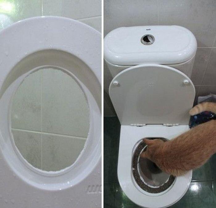 Приучение котейки к унитазу 6_014